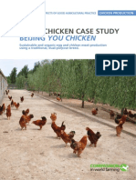 GAP Case Study Broiler Laying Hens Dual Purpose Beijing You Chicken China