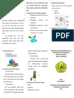 Leaflet Perawatan Luka Perinium
