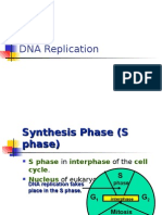 Bio Final Dna Replication