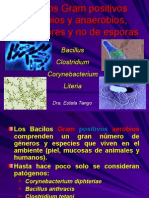 clase9bacilosgram-120915101440-phpapp02.ppt