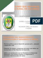 INSTITUCIONES QUE APOYAN EL SECTOR RURAL EN COLOMBIA.pptx