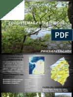 ECOSISTEMAS ESTRATEGICOS.pptx