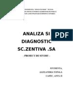 ANALIZA Şi Diagnosticul Firmei
