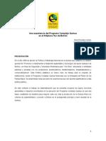 10. Complejo Quinua 2013