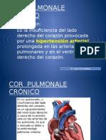 Cor Pulmonale Crónico