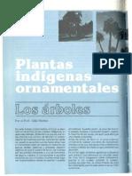 arboles ornametales nativos