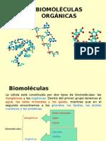 Biomoléculas Organicas