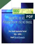Biodiesel Soja Perspectivas Uso No Brasil