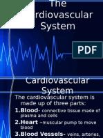 The Cardiovascular System(2)