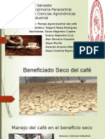 Beneficiado Del Café
