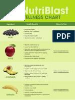 NutriBlast Wellness Chart Copy