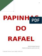 Papinhas Do Rafael - A Partir Do Sexto Mês