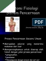 digestivus1 (mulut-osofagus)