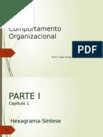 Comportamento Organizacional Capitulo 1 PLT