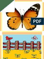 扩写句子(单元四).pptx