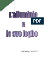 PoliTO - Alluminio 2005