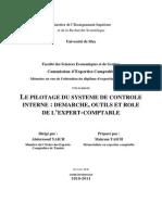 le pilotage du système contrôle interne.pdf