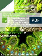 3_celula_unidade_biodiversidade1.pptx