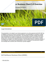 SAP NetWeaver Business Client 5.0 Overview