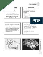 Aula_2_-_Psicomotricidade_e_Aprendizagem_Prof_João_Maffei.pdf