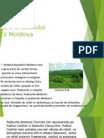 Procesele Exogene de Formare a Reliefului Republicii Moldova