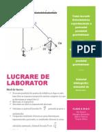 Lucrare de Laborator