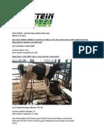 Sale Update Holstein Plaza Online Heifer Sale March 2015 Version 2
