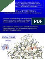 Bioq12 a Estructura de Proteinas