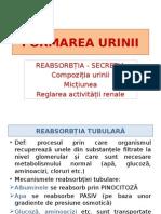 Reabsorbție, Secreție urinară, micțiune,  reglare.pptx