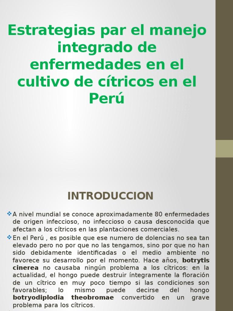 Estrategias Par El Manejo Integrado de Enfermedades en Citricos