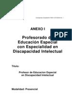 educ%20especial%20Intelectual