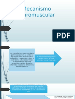 Mecanismo Neuromuscular