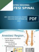 CSS Spinal Anasthesi Kel 4 Ang 5