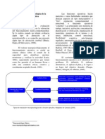 Evaluaci n Neuropsicol Gica de La Funci n Ejecutiva