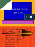 Gadar Neo