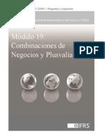19_Combinación de Negocios y Plusvalía