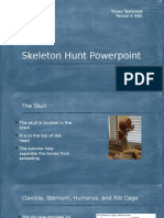 skeleton hunt powerpoint