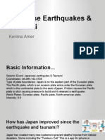 kerima amer earthquake project