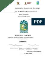 Formato de Reporte de Practicas1