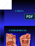 semiologia_cabeza_y_cuello.ppt