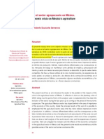 Impacto de La Crisis en El Sector Agropecuario en México