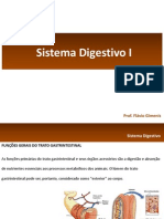 Sistema Digestivo I e II