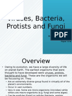 virusesbacteriaprotistsandfungi