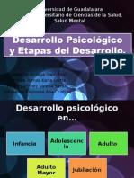 Desarrollo Psicológico y Etapas del Desarrollo