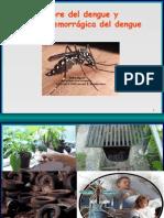 dengue-hemorragico-junio-2005-1208718350868768-9