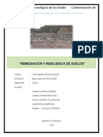 SUELOS-REMEDIACION-1