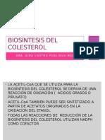 Biosintesis Del Colesterol