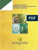 pedoman diagnosis cendawan.pdf