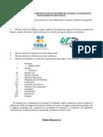 Plantilla Informe IMI