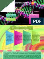 Bm g1 Sg2 Multiplex Pcr y Sus Aplicaciones